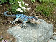Garten Dekorations-Gecko