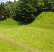 Suche Weideflächen und Wiesen in