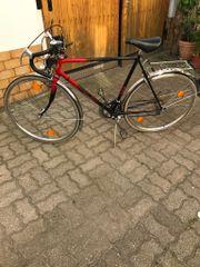Turmberg Fahrrad