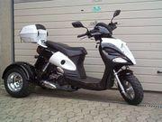 Zhenhua Trike Roller