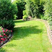 Suche Wiese Garten Weide Grundstück