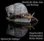 Foto Modelle im Bereich Fetisch