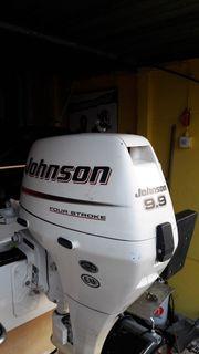 Johnson 9.9