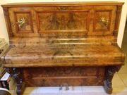 Klavier aus Wurzelahorn