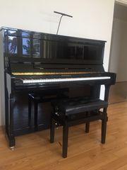 Klavier Bohemia von C Bechstein