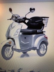 Senioren und Behinderten Elektro- Fahrzeug