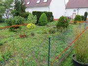 Nutzgarten im Hinterhof