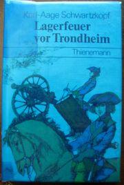 Spannender Roman Lagerfeuer von Trondheim