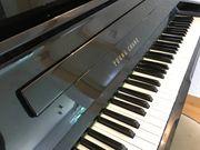Young Chang Piano Klavier