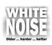 WHITE NOISE sucht Bassisten