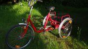Dreirad für Erwachsene/