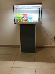 Tetra Aquaart LED-Aquarium 60 Liter