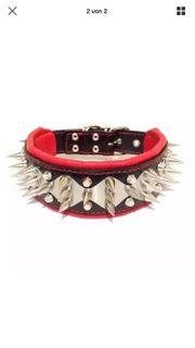 Halsband Lederhalsband Nieten Hundehalsband