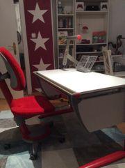 Schreibtisch Moll Runner