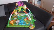 Fisher Price Spielbogen Rain Forest