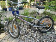 Marken BMX (FISHBONE)