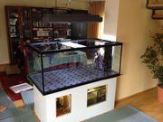 Aquarium 150x80x60 mit