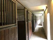 Pferdeboxen in Schaafheim.