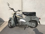 Suche Puch DS60R
