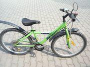 MTB SCOTT Kinderrad 24 mit