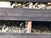 Brennholz Bauholz zu verschenken