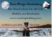 Hundetraining - individuell für