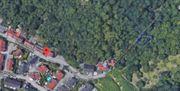 Wald obstbaumgrundstück Weinheim Betentalstraße