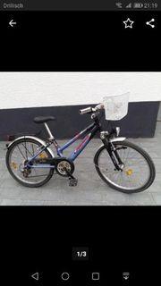 Fahrrad 24 zoll Pegasus