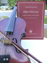 Violinennoten für Schülerstreichorchester