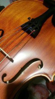 Viola zu verkaufen (