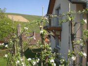 Ferienhaus in Baden-