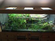 Aquarium 160 60 60