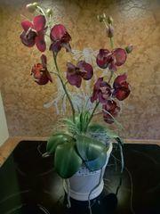 Künstliche Orchidee im Keramiktopf Höhe