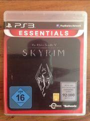 Skyrim - The Elder