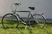 Cityrad Gazelle mit 7Gang Premium