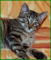 Trixi, Geburt: September