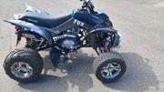 Shineray 250ccm Quad Bj 2012