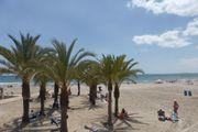 Doppel und Einzelzimmer in Alicante-Spanien