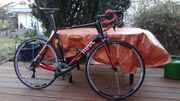 Rennrad Rose XeonTeam CGF