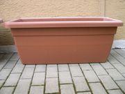 Pflanzkübel Kunststoff ab 19 - EUR