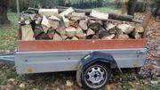 Buche-Brennholz trocken ofenfertig