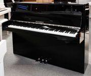 Klavier Weinberg U