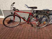 fahrrad ktm veneto