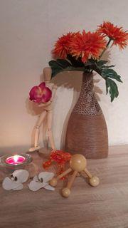 Wellness Massage +SPA-