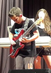 Gitarrist sucht Mitmusiker/