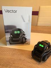 VECTOR ROBOT by Anki UK