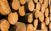Brennholz in Meterstücken zu verkaufen