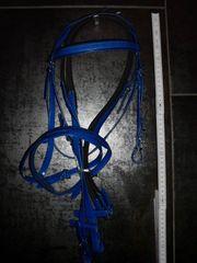 Supersüße blaue Trense Zaumzeug für