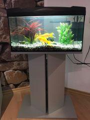 Aquarium Marina Basic