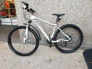 Mountainbike 29 INOC